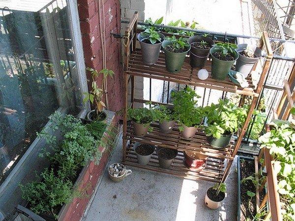 Jardines verticales para exteriores e interiores 50 fotos e ideas - Jardines verticales interiores ...