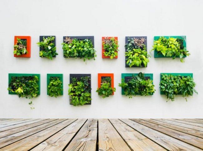 Jardines verticales para exteriores e interiores 50 fotos for Para que sirven los jardines verticales