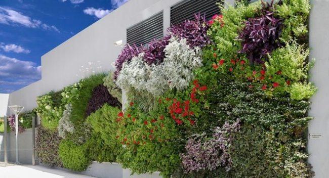 Jardines Verticales Para Exteriores E Interiores 50 Fotos E Ideas