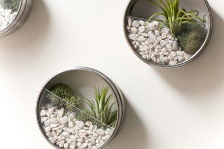 materiales - Jardines En Miniatura