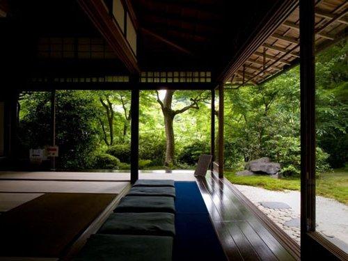 sala Zen con vista a un frondoso jardín verde