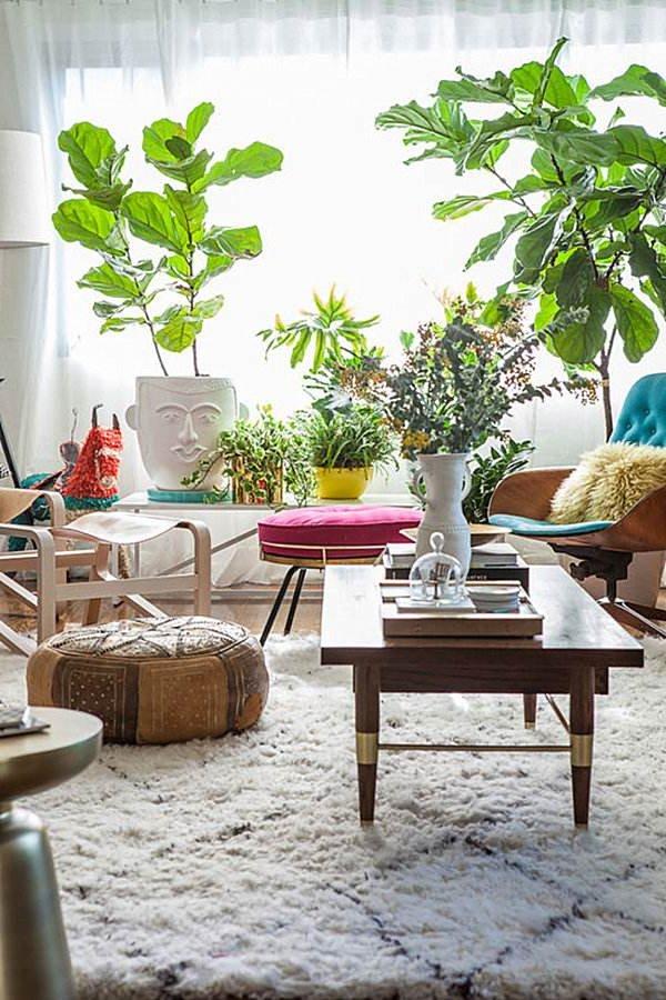 Decoraci n con plantas 70 fotos y consejos de interiores for Decoracion de jardines con plantas