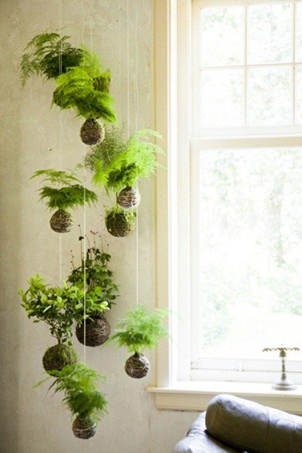Decoración con plantas 70 fotos y consejos de interiores verdes ...